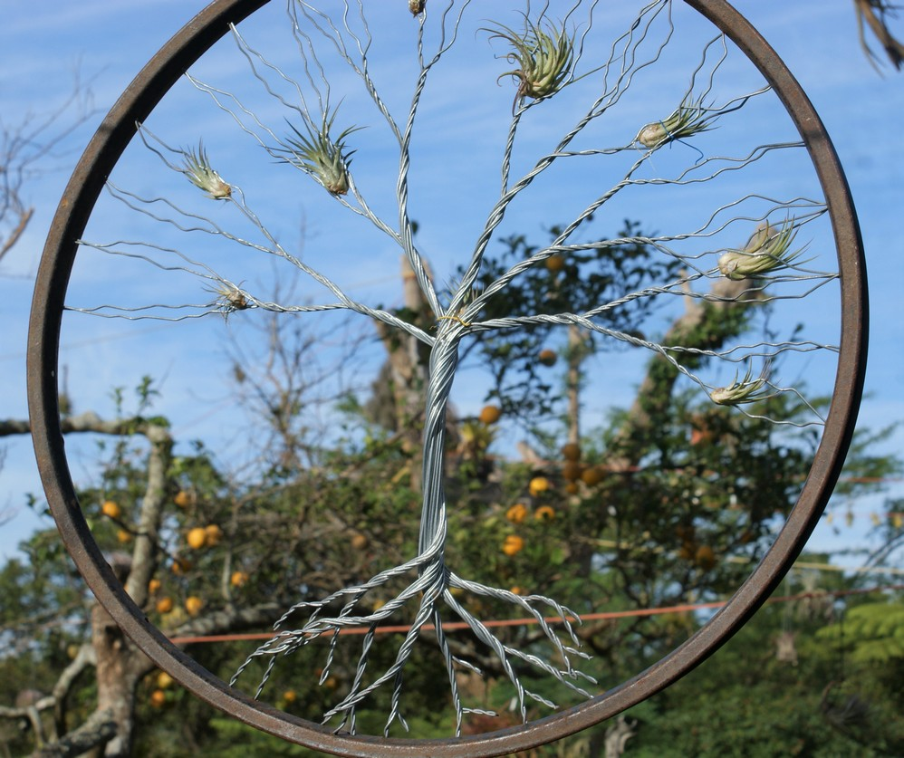 bicycle-wheel-trees