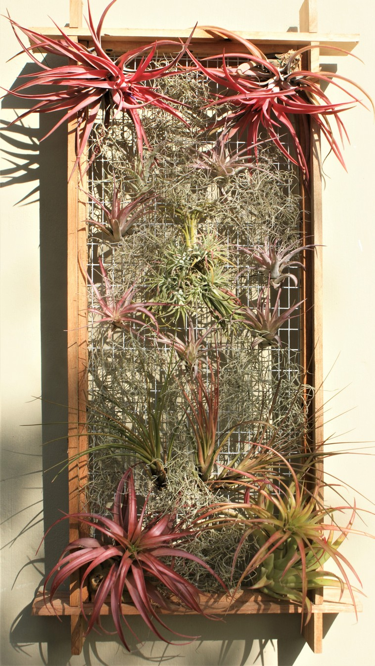custom-vertical-gardens