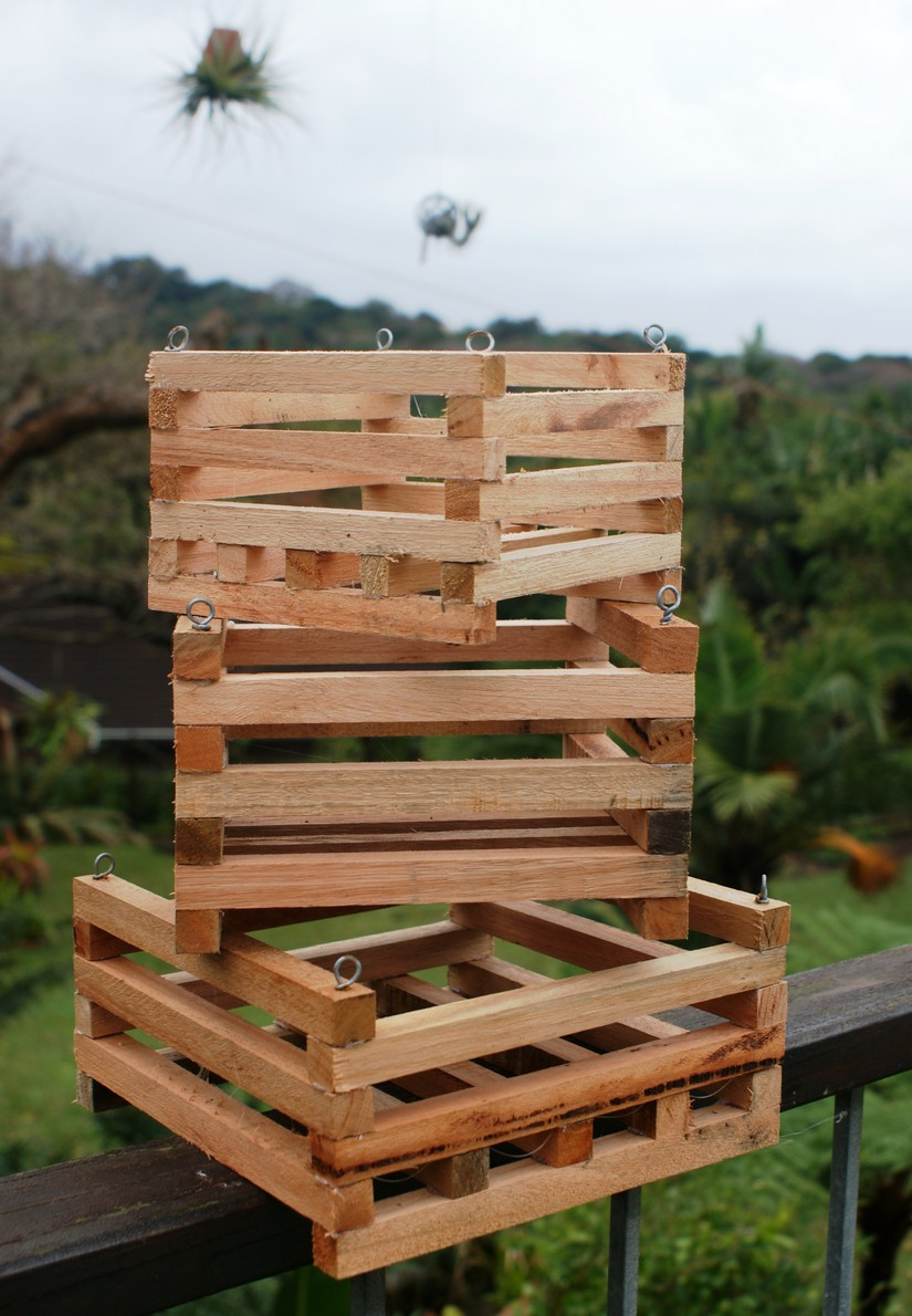 slotted-wooden-orchidtillandsia-baskets
